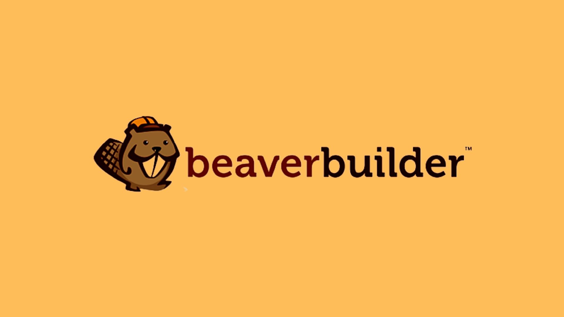 What Is WordPress Beaver Builder?