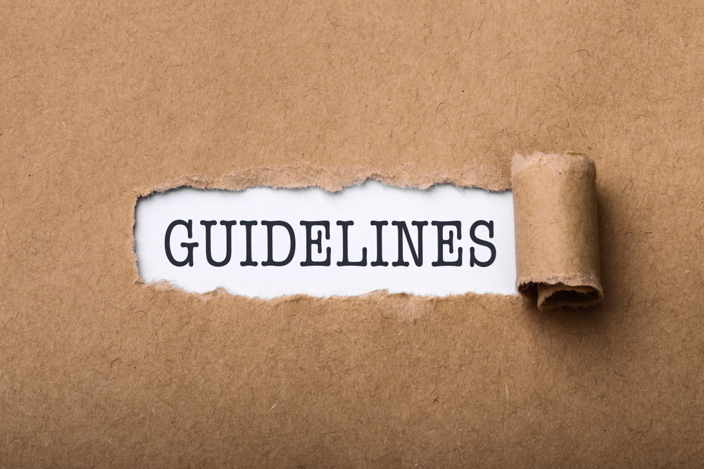 Google SEO Penalty Guidelines