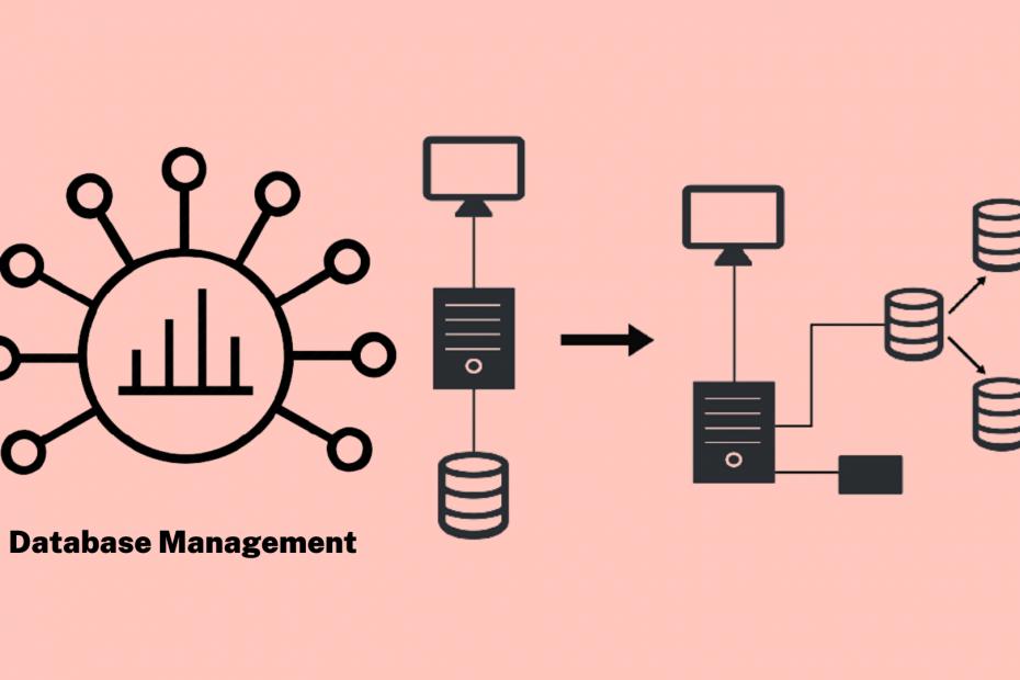 How Database Management Works