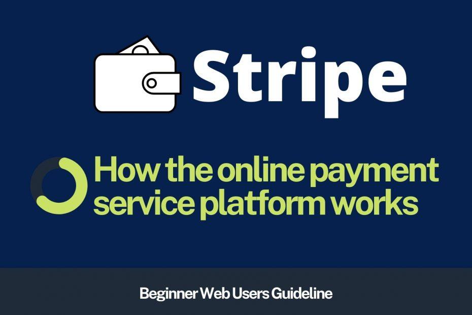 How Stripe Works