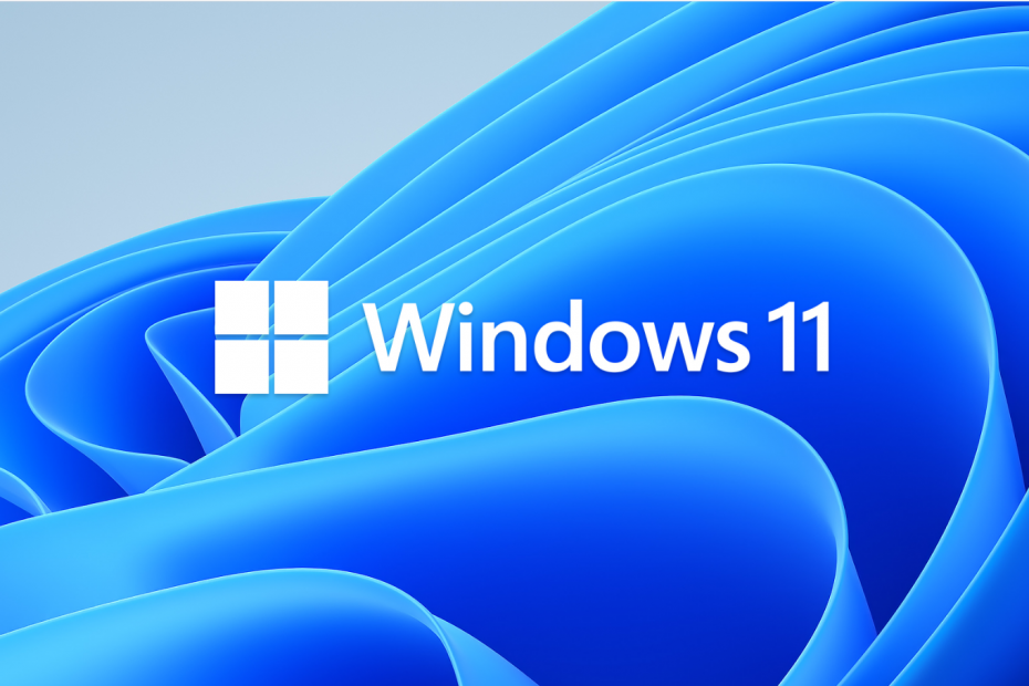 What does Windows 11 offer?