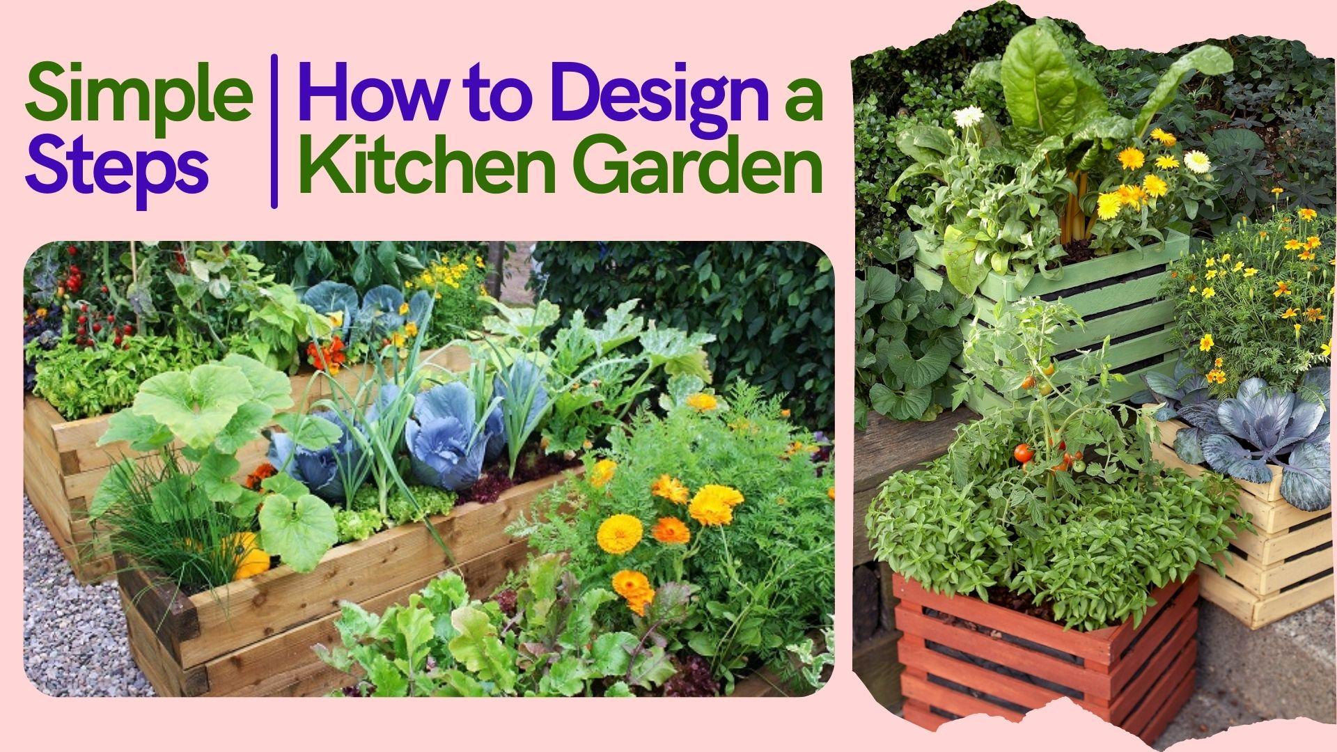 What Is Kitchen Garden?