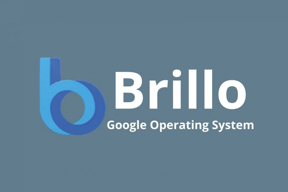 What Is Google Brillo OS?