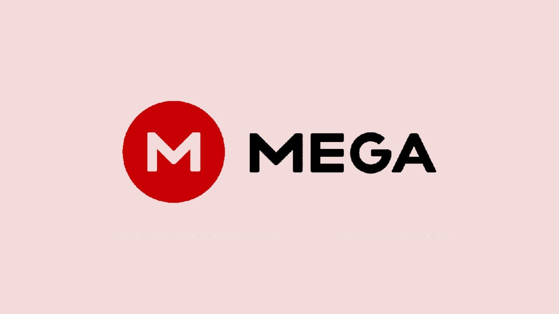 How MEGA Cloud Storage Works